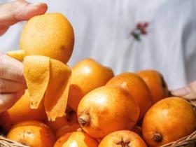 枇杷和芒果能一起吃吗